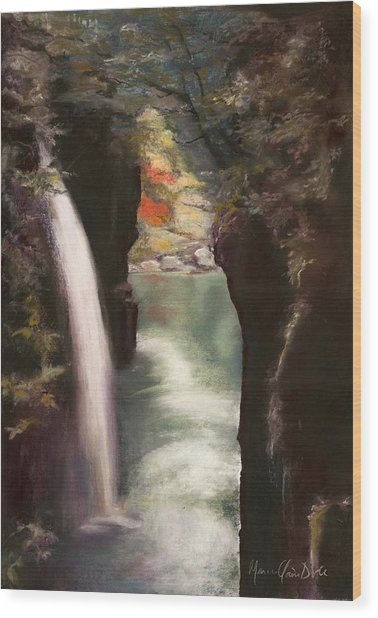 Moment Of Eternity - Takachiho Falls Wood Print by Marie-Claire Dole