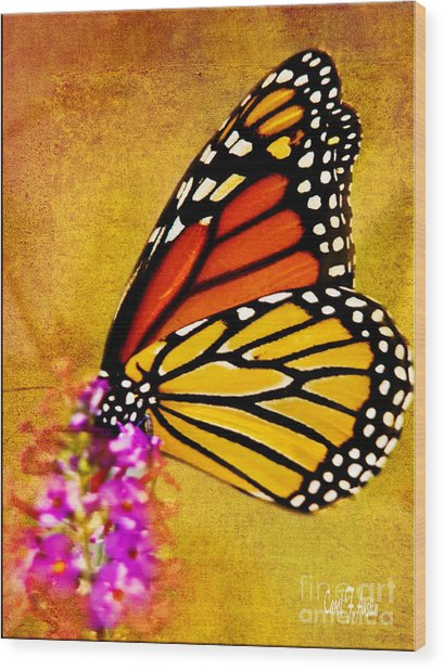 Monarch Butterfly Color Splash Sunset Wood Print