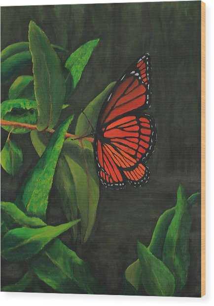 Viceroy Butterfly Oil Painting Wood Print