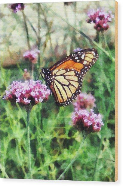 Monarch Butterfly On Pink Lantana Wood Print by Susan Savad