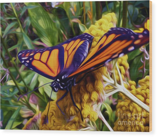 Monarch On Yarrow Wood Print