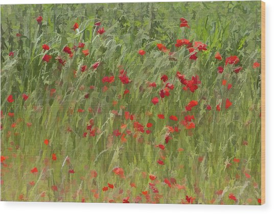 Monet Poppies IIi Wood Print