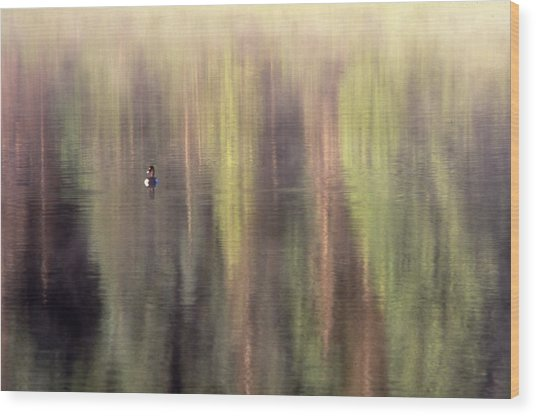 Monet's Duck Wood Print