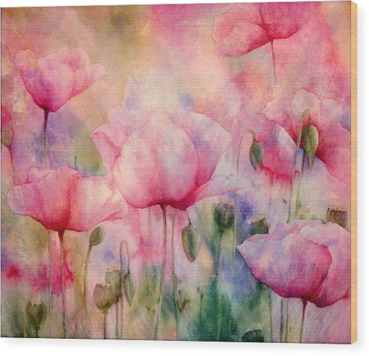 Monet's Poppies Vintage Warmth Wood Print