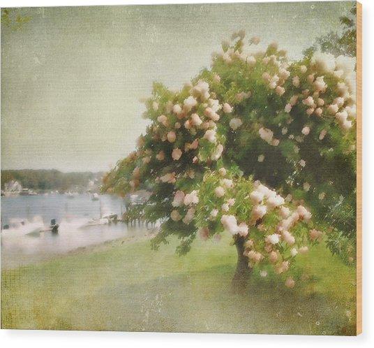 Monet's Tree Wood Print
