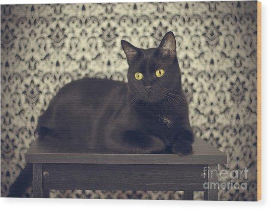 Mongo The Robust Cat Wood Print