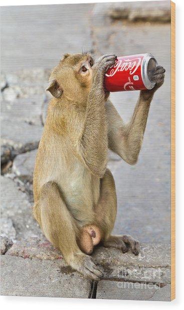 Monkey Enjoys Drinking Wood Print