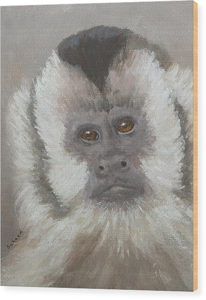 Monkey Gaze Wood Print