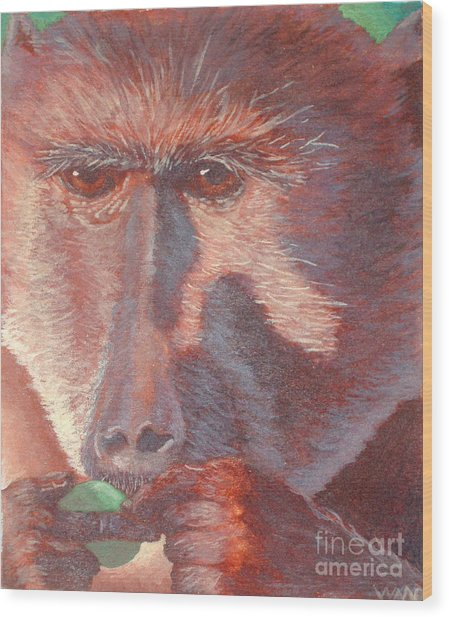 Monkey's Lunch Wood Print