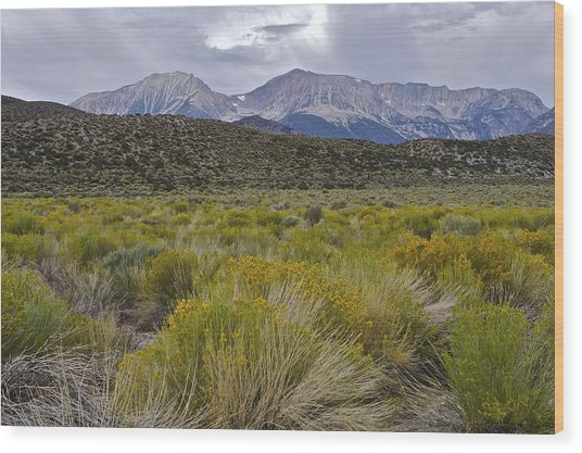 Mono Basin Lee Vining 1 Wood Print
