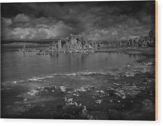 Mono Lake Tufa Wood Print