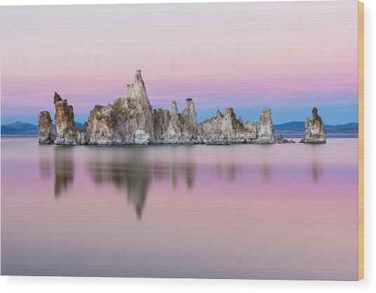 Mono Pastels Wood Print