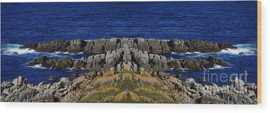 Montague Island Wood Print