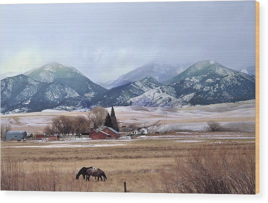 Montana Ranch - 1 Wood Print