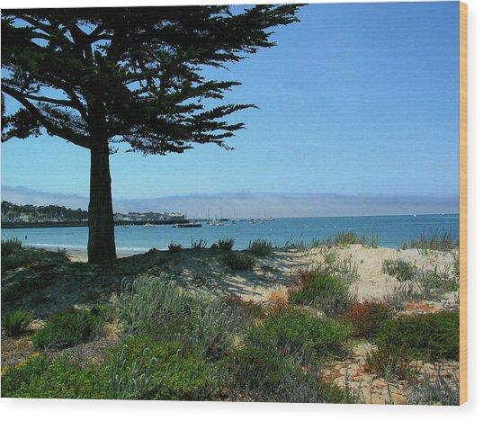 Monterey Dunes Wood Print