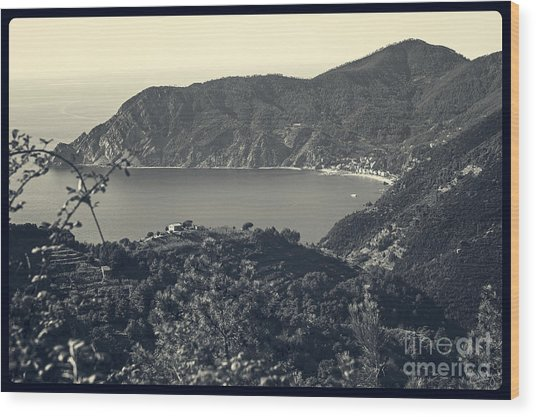 Monterosso Al Mare From Above Wood Print