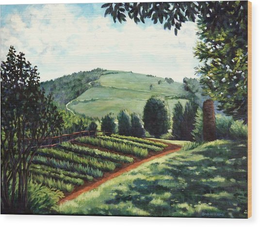 Monticello Vegetable Garden Wood Print