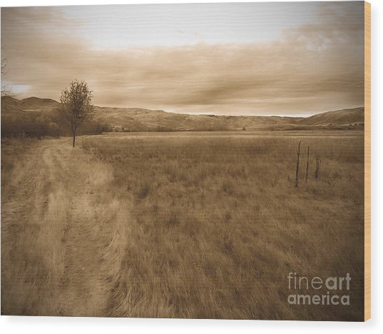 Montour Wood Print by Kimberly Maiden