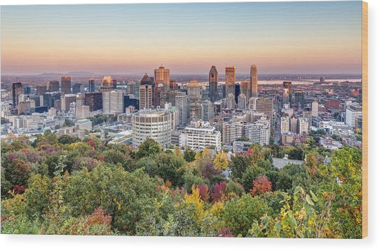 Montreal City In Autumn Wood Print