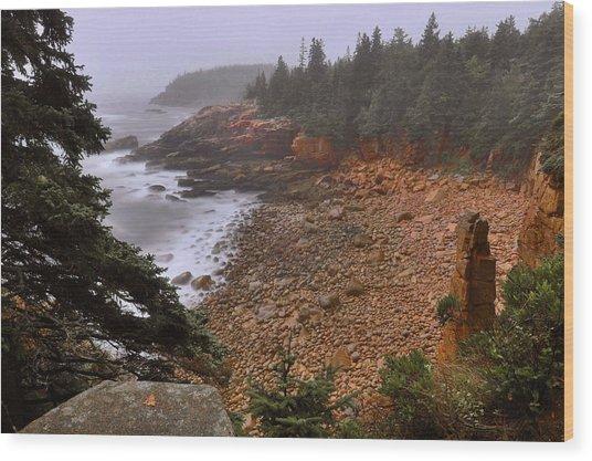 Monument Cove - Acadia Wood Print