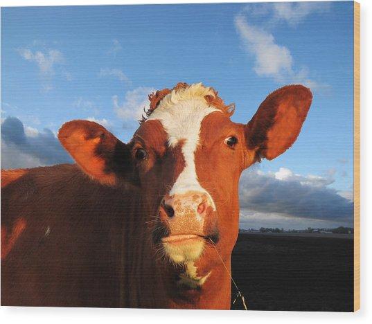 Moo Don't Say Cow Wood Print