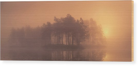 Moody Wood Print by Andreas Christensen