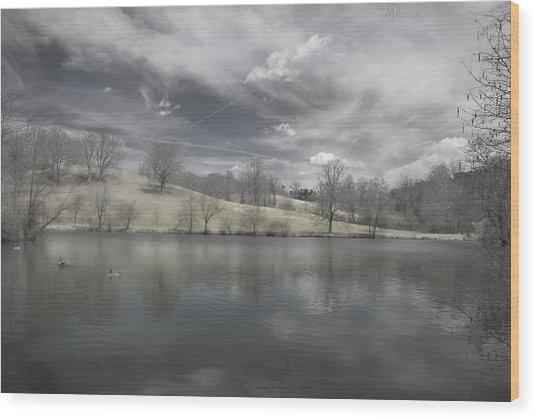 Moody Blue Wood Print by Cindy Rubin