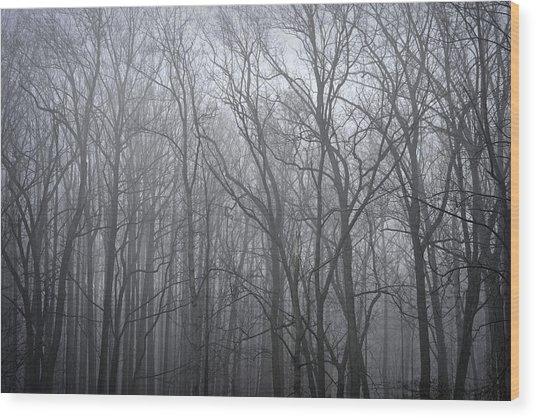 Moody Outlook Wood Print