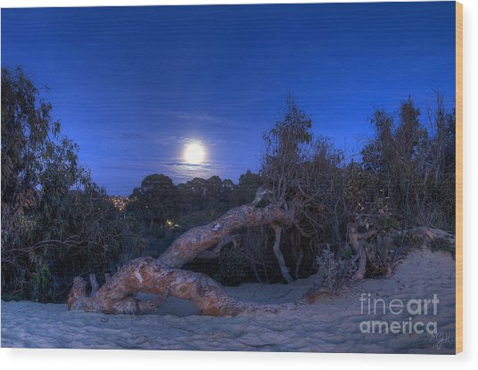 Moon Branch Wood Print