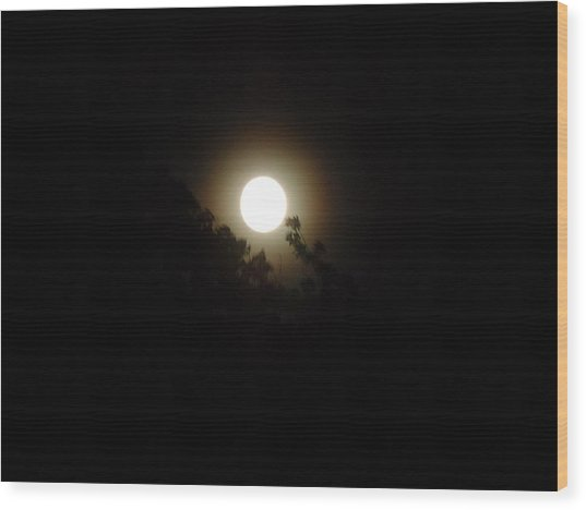 Moon Glow Wood Print