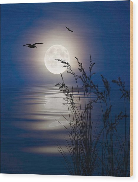 Moon Light Silhouettes Wood Print