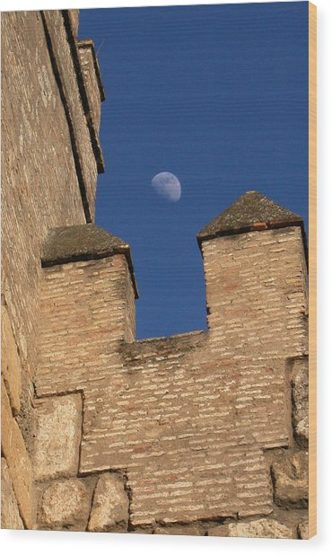 Moon Over Alcazar Wood Print