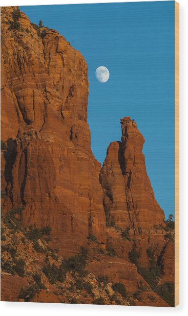 Moon Over Chicken Point Wood Print