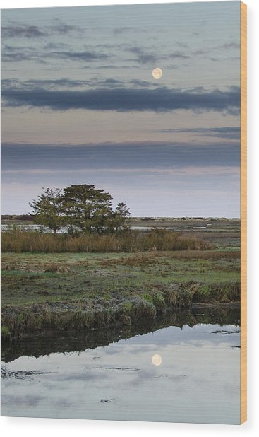 Moon Over Marsh Wood Print