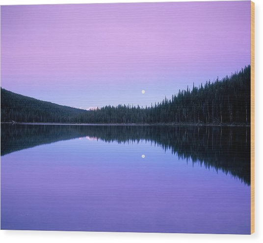 Moon Rise Wood Print by Leland D Howard