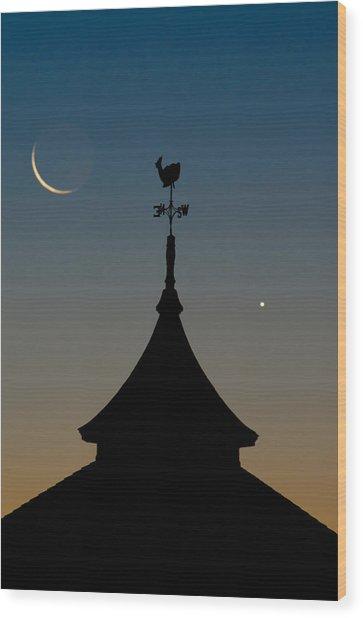 Moon Whale Venus. Wood Print