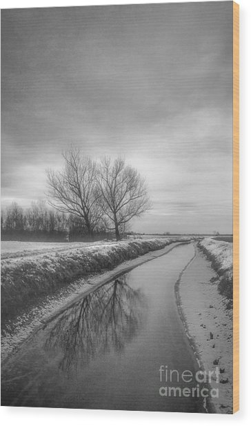 Moonland Wood Print