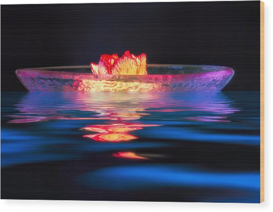 Moonlight Drift Wood Print by Joan Herwig