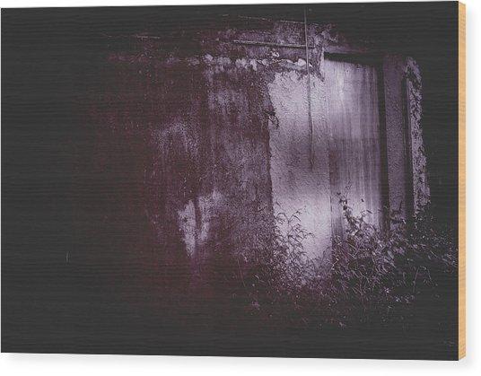 Moonlight Entrance  Wood Print
