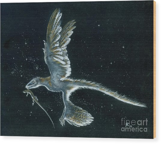 Moonlight Hunt - Microraptor Wood Print