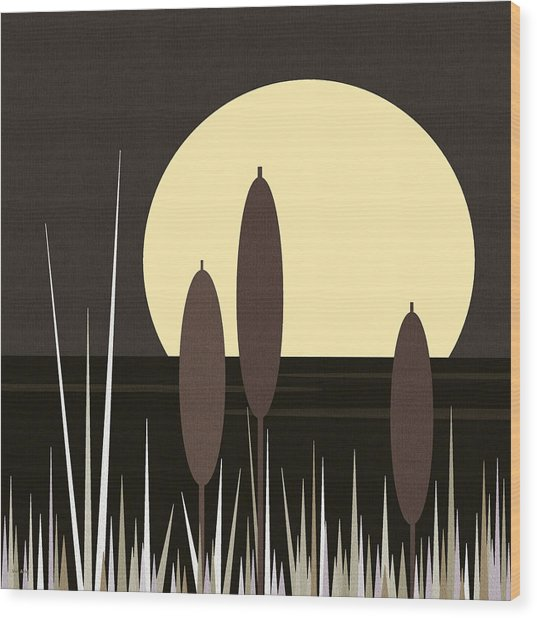 Moonlight On Loon Lake Wood Print