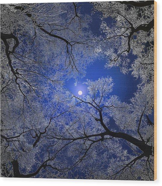 Moonlight Trees Wood Print by Igor Zenin