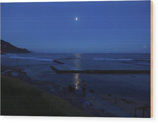 Moonlight Swim Wood Print