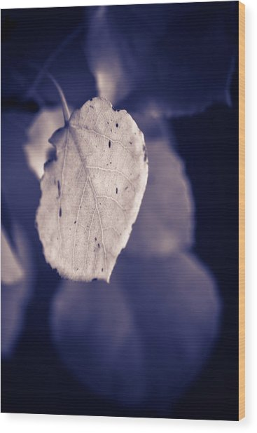 Moonlit Aspen Leaf Wood Print
