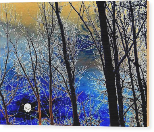 Moonlit Frosty Limbs Wood Print