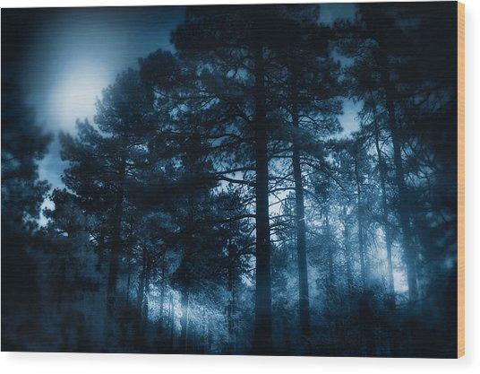Moonlit Night Wood Print