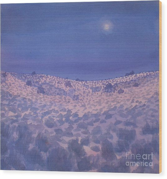 Moonlit Winter Desert Wood Print