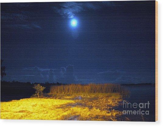 Moonrise Over Rochelle - Landscape Wood Print