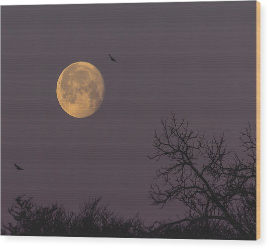 Moonscape Wood Print