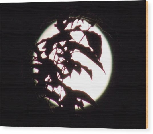 Moonshine 10 Evasion Wood Print
